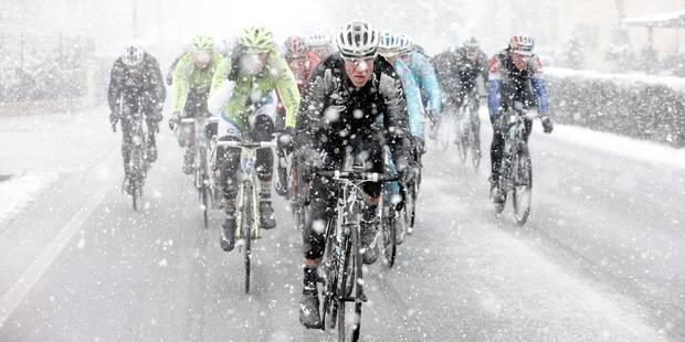 Milan-Sanremo redevient une classique pour sprinters - La DH