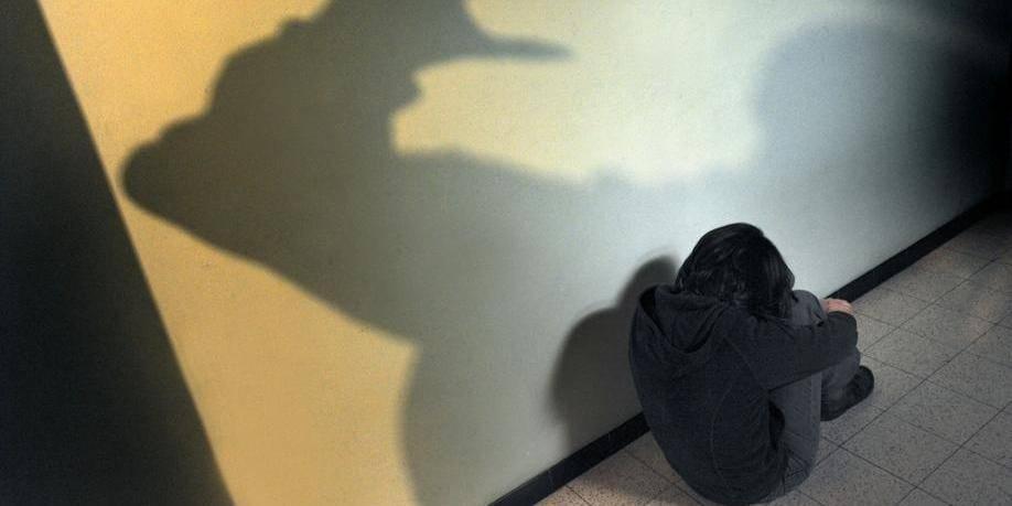 15 mois de prison pour avoir violé une élève - La DH