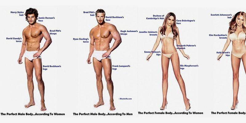 Et le corps parfait est...