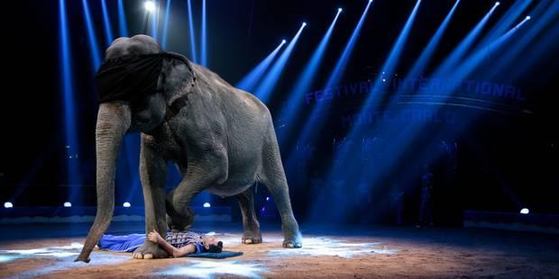 Les cirques veulent récupérer leurs animaux sauvages - La DH