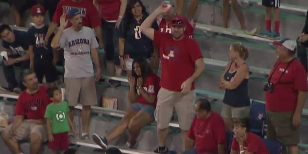 Un spectateur pourrit l'ambiance lors d'un match - La DH