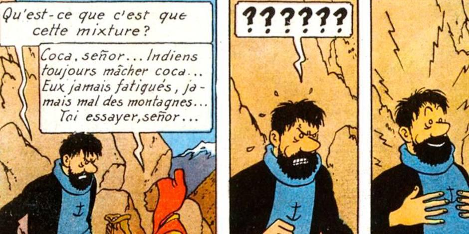 Découvrez Tintin et Haddock sous un jour nouveau - La DH