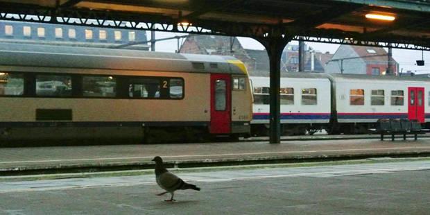 Trains: trafic interrompu ce week-end sur la ligne 161 Bruxelles-Ottignies - La DH