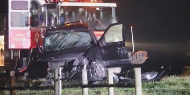 USA: elle heurte un ours noir en voiture, 3 morts et 8 blessés - La DH