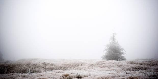 15 cm de neige en Ardenne ce week-end