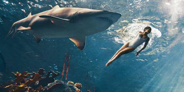 Rihanna nage avec les requins !
