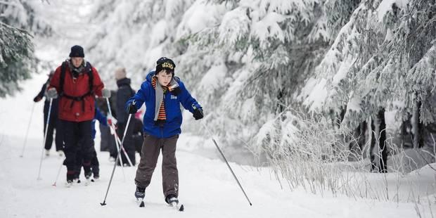 Ovifat: un skieur percute un arbre de plein fouet - La DH