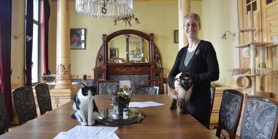 Un deuxième bar à chats à Bruxelles