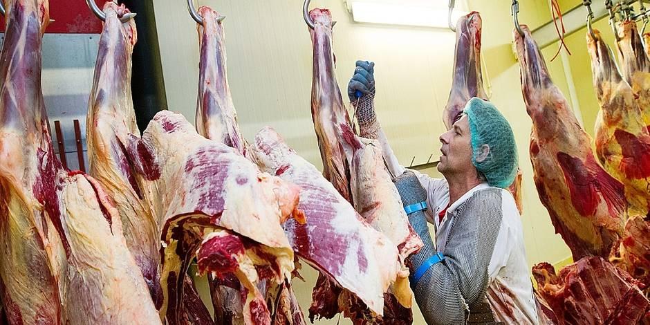 On mange environ 1 kg de viande par semaine ! - La DH