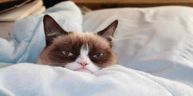Vous sentez-vous concerné par la mauvaise humeur du matin ? - La DH