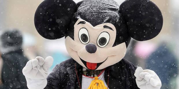 Pumba, Mickey Mouse et Robin des Bois arrêtés à Louvain: ils volaient des soutiens-gorge - La DH