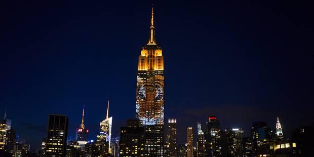 L'Empire State Building s'illumine pour les animaux en danger - La DH
