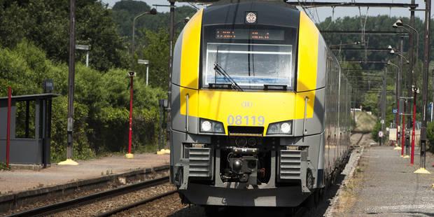 Perturbations sur le rail: circulation à l'arrêt entre La Louvière-Sud et Binche - La DH