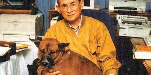Emprisonné pour avoir insulté le chien du roi - La DH