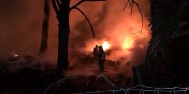 Jumet: violent incendie dans un dépôt illégal, plusieurs milliers de pneus partent en fumée (VIDEO) - La DH