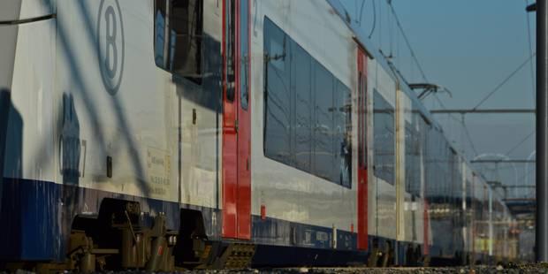 """Deux trains caillassés en gare de Piéton... """"J'ai cru à des rafales d'arme automatique"""" - La DH"""
