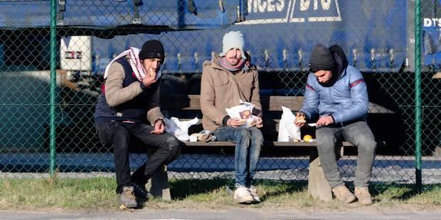 La Belgique en mesure de supporter la vague actuelle de migrants (PHOTOS) - La DH