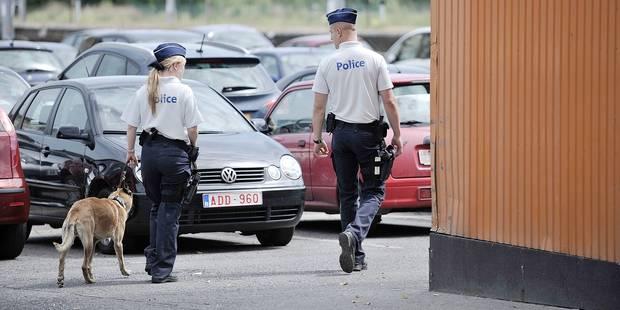Charleroi: il voulait étrangler le chien policier - La DH