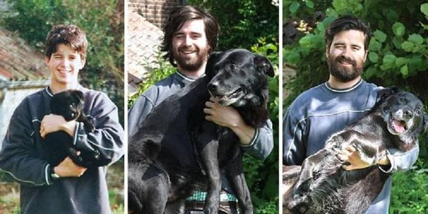 Un Belge immortalise en trois photos les 15 ans d'amitié avec son chien et fait le buzz - La DH
