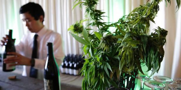 Arrêtés alors qu'ils tentaient de voler une plantation de cannabis - La DH