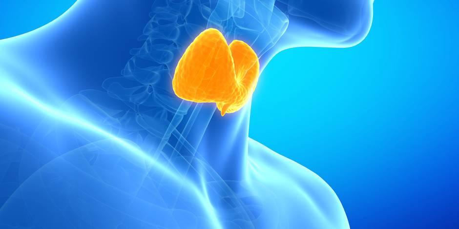 600.000 cancers de la thyroïde diagnostiqués à tort