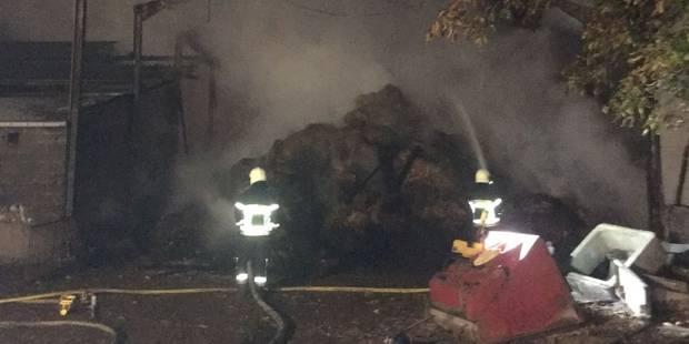 Un violent feu de ferme s'est déclaré à Saint-Georges - La DH