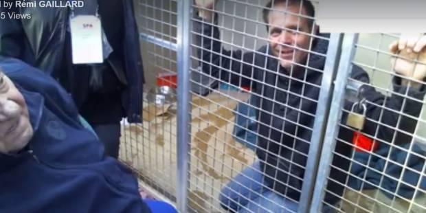 Au bord des larmes, Rémi Gaillard reste dans sa cage de la SPA de Montpellier (VIDEOS) - La DH