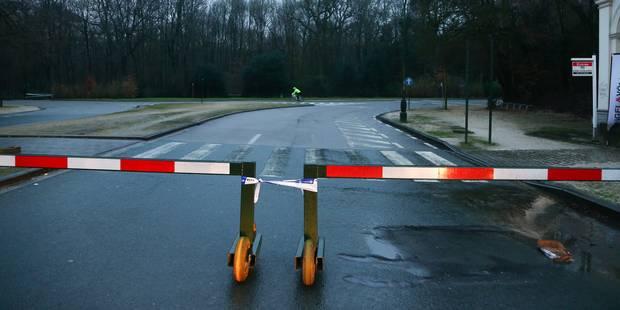 Intempéries: fermeture des parcs de la région bruxelloise ce week-end - La DH