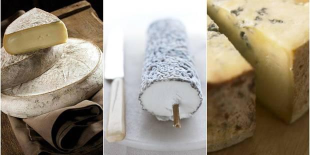 La bière et le fromage : nos conseils en 7 x 7 combinaisons - La DH