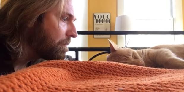 Son chat le réveille au milieu de la nuit : sa vengeance fait le buzz - La DH