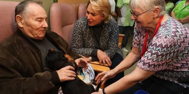 Bruxelles: Des chiens pour stimuler les sens des seniors - La DH
