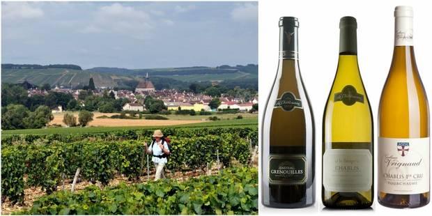 La Chablisienne : le paradis du vin blanc - La DH