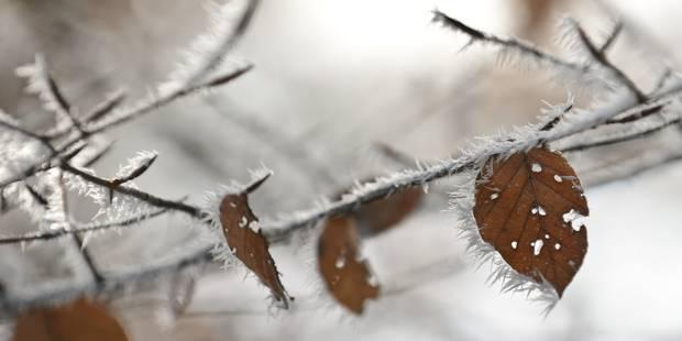 Météo: givre pour le dernier jour de l'année, neige pour le premier
