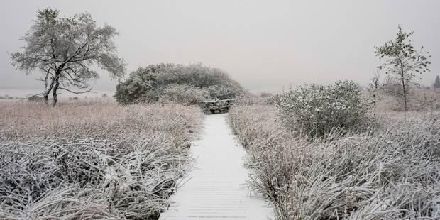 De la neige en Ardennes dès ce soir !