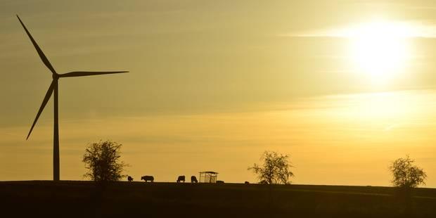 Éoliennes à Nivelles : WindVision provoque la déception? - La DH