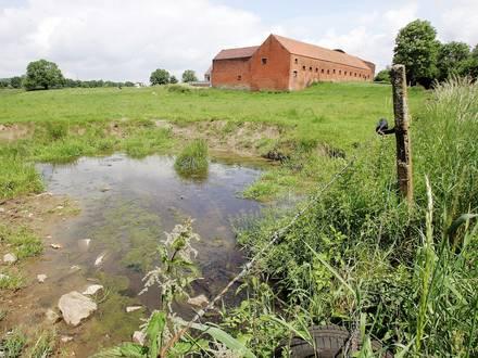 page mons/pollution dans un ruisseau à Hennuyere