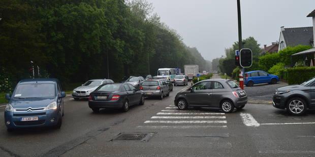 Waterloo: La commune rachète deux zones boisées - La DH