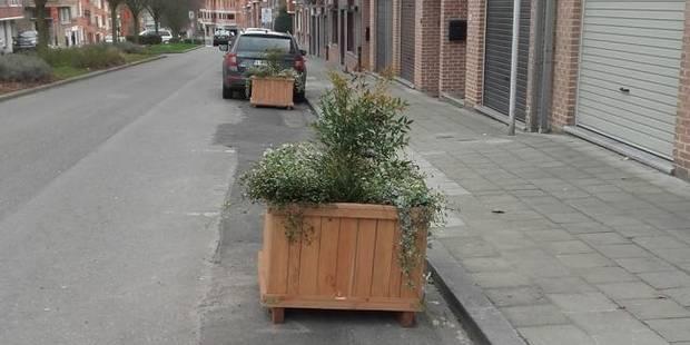 Anderlecht: Protestation contre la suppression de places de parking au profit de bacs à plantes - La DH