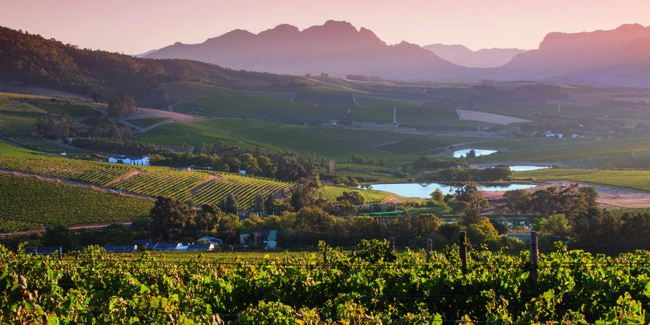 Jordan - le joyau du Stellenbosch