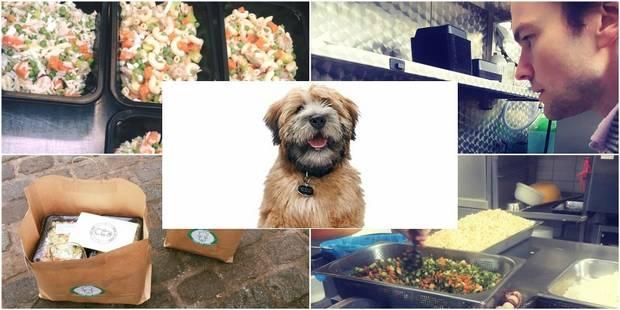Dog Chef cuisine pour votre toutou - La DH