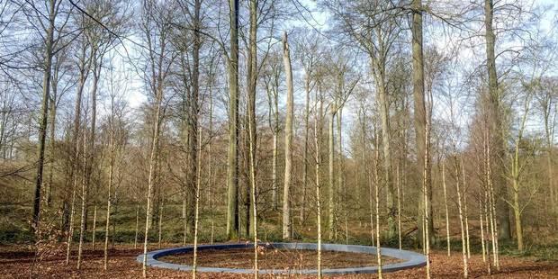 Forêt de Soignes : 32 arbres plantés en hommage aux victimes des attentats - La DH