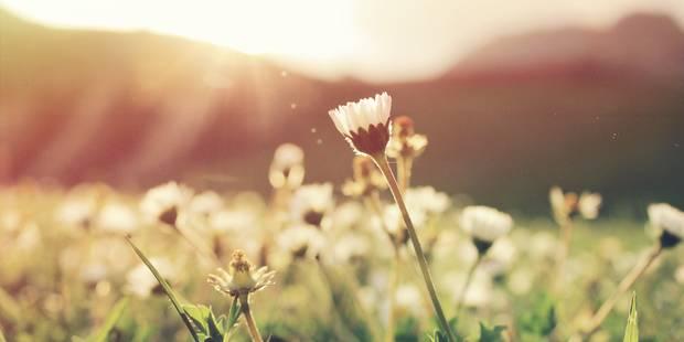 Cafés, terrasses, jardin : toutes les adresses pour profiter du printemps - La DH
