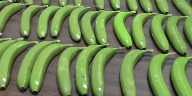 17 kilos de cocaïne trouvés dans des fausses bananes - La DH