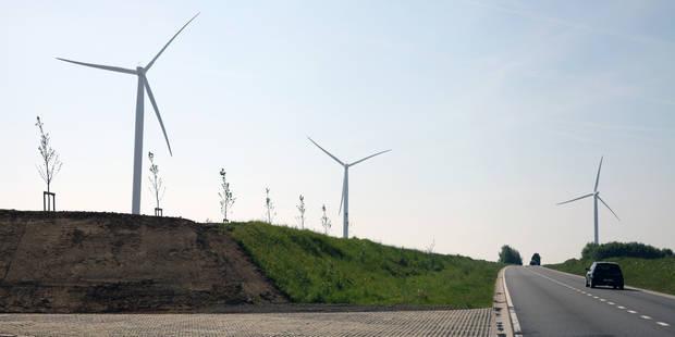 Enghien: le projet éolien de Colruyt n'a plus le vent en poupe! - La DH