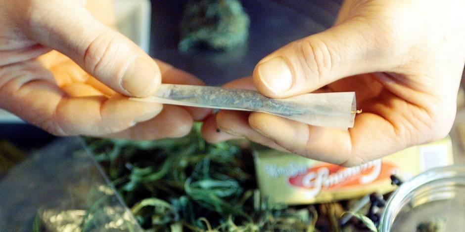 Mons : Le Cannabis Social Club en guise d'étude scientifique