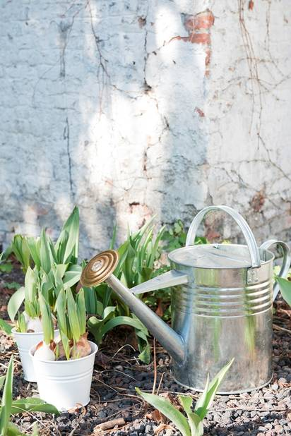Dille & Kamille, arrosoir et petits pots en laiton, à partir de 3.95€
