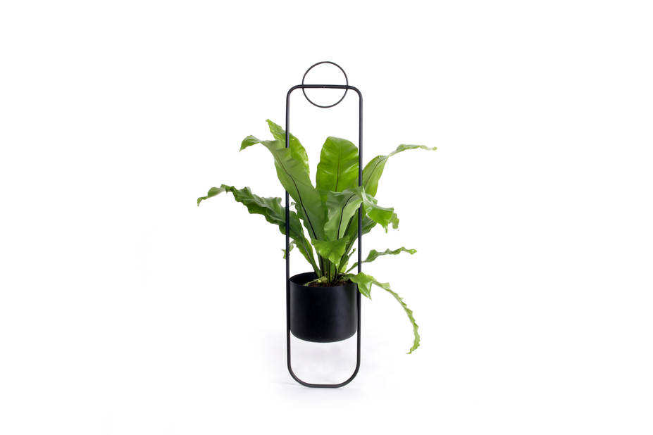 suspension à plante XL Boom, 96.50€
