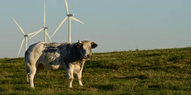 Des éoliennes à Ostiches ? - La DH