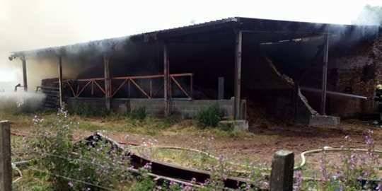 Un hangar agricole en feu à Ormeignies, un autre à Hellebecq - La DH