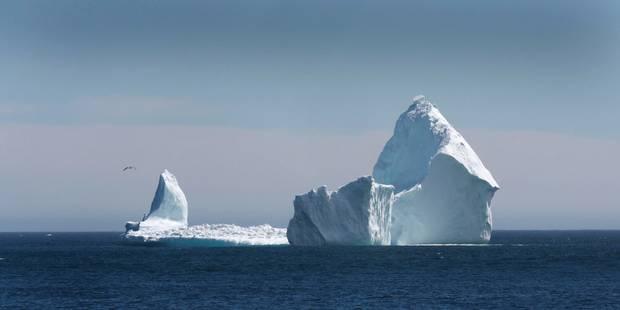 Un énorme bloc de glace sur le point de se détacher en Antarctique - La DH
